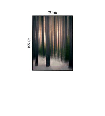 Tranh Rừng Cây Trong Sương